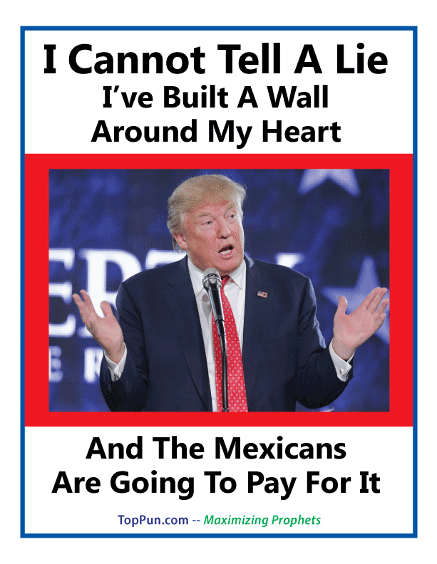Anti Donald Trump POSTER: I Cannot Tell A Lie, I've Built A Wall Around My Heart And Mexicans Will Pay For It