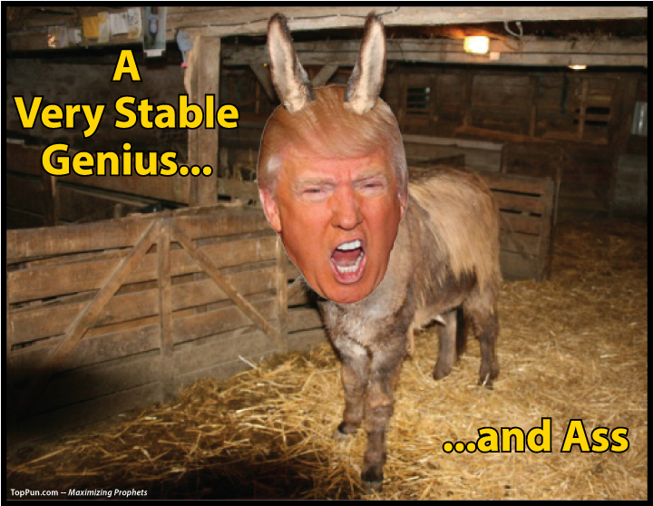 FREE POLITICAL POSTER: Prez Donald Trump - A Very Stable Genius...And Ass